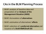 cas in the blm planning process2