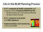 cas in the blm planning process3
