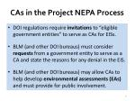 cas in the project nepa process