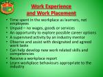 work experience and work placement1