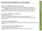 enterprise architecture key roles