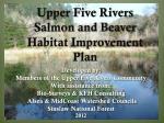 upper five rivers salmon and beaver habitat improvement plan
