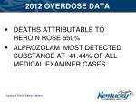 2012 overdose data2