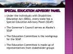 special education advisory panel