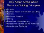 key action areas which serve as guiding principles