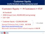 customer equity useful analysis at the company level