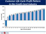customer life cycle profit pattern in the credit card industry