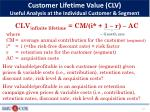 customer lifetime value clv useful analysis at the individual customer segment1