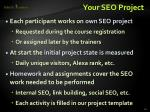 your seo project1