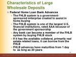 characteristics of large wholesale deposits18