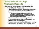 characteristics of large wholesale deposits6