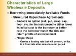 characteristics of large wholesale deposits9