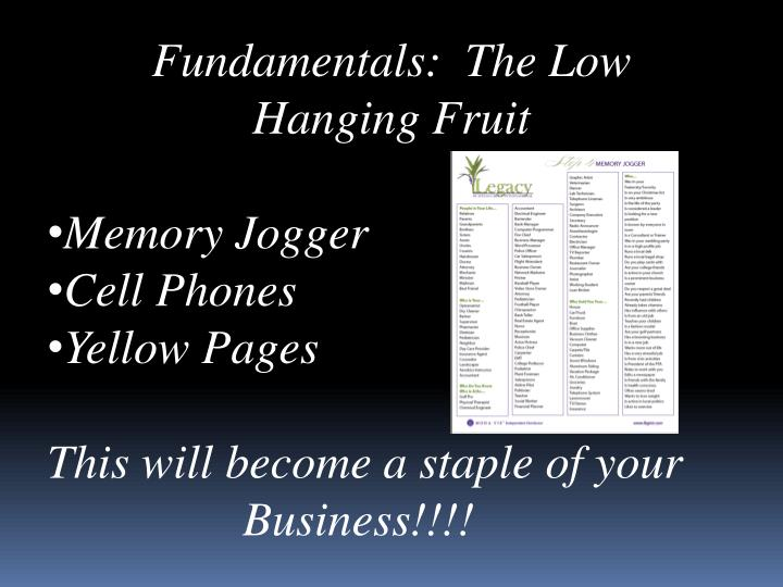 Fundamentals:  The Low
