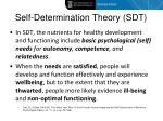 self determination theory sdt
