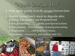 apple storage 101