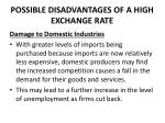 possible disadvantages of a high exchange rate2