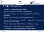 3 project characteristics