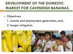 development of the domestic market for cavendish bananas
