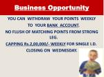 business opportunity3