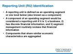 reporting unit ru identification