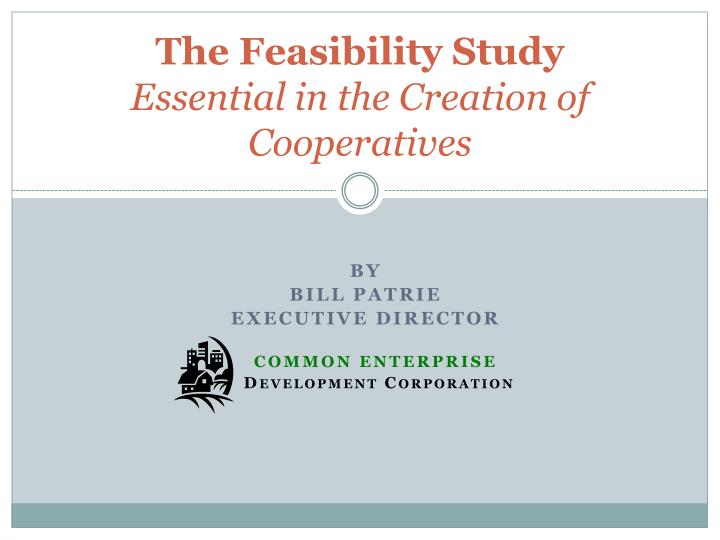 the feasibility study essential in the creation of cooperatives n.