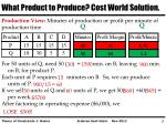 what product to produce cost world solution4
