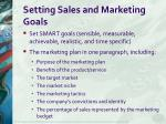 setting sales and marketing goals