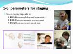 1 6 parameters for staging