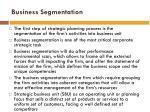 business segmentation