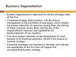 business segmentation1