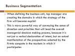 business segmentation2