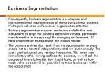 business segmentation3