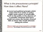 what is the precautionary principle how does it affect nano
