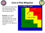 cost of risk mitigation