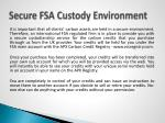 secure fsa custody environment