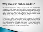 why invest in carbon credits