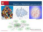 organic and networked organizations are like