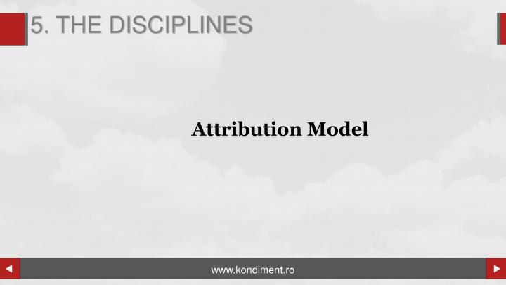 5. THE DISCIPLINES