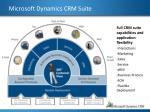 microsoft dynamics crm suite