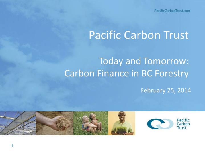 pacific carbon trust today and tomorrow carbon finance in bc forestry n.