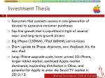 investment thesis