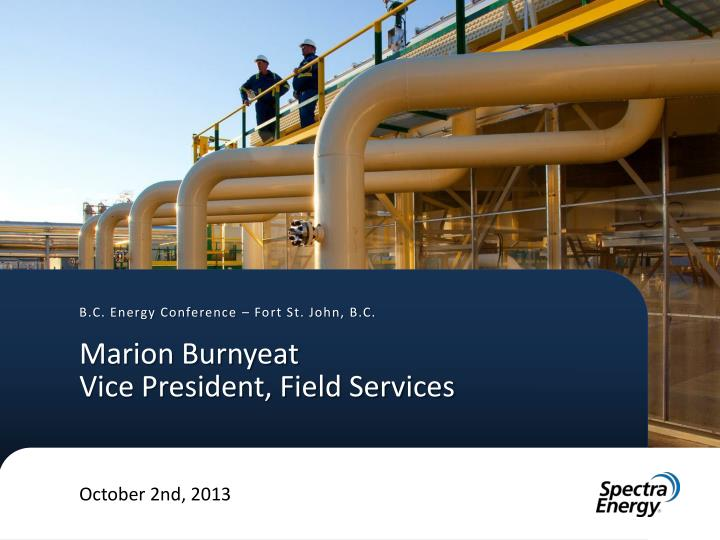 marion burnyeat vice president field services n.