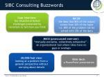 sibc consulting buzzwords