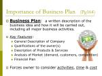 importance of business plan pg164
