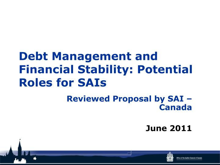 debt management and financial stability potential roles for sais n.