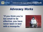 advocacy works