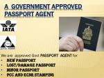 a government approved passport agent