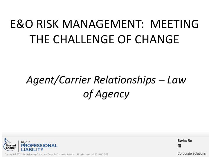 e o risk management meeting the challenge of change n.