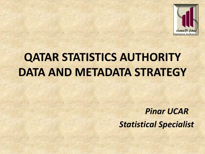 qatar statistics authority data and metadata strategy n.
