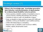 strategic areas 1